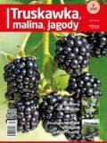 Truskawka Malina Jagody TMJ - okładka