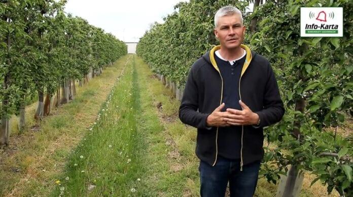 Komunikat sadowniczy – Robert Binkiewicz, Agrosimex, 20.05.2020