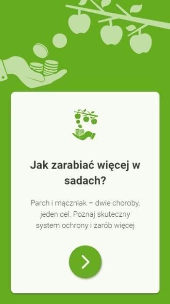 Ekonomika w Sadach - jak zarabiać więcej?