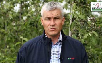 Wzrost owoców - ochrona i pozostałe zabiegi - komunikat sadowniczy Agrosimex