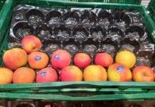 Niemieckie markety wprowadzają kodeks postępowania wobec rolników
