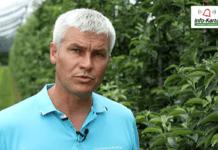 Komunikat sadowniczy – Robert Binkiewicz, Agrosimex, 18.06.2020