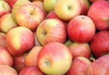 Jabłka nadal najpopularniejszym owocem wśród Polaków!