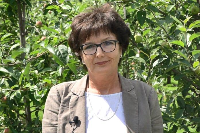 dr hab. Dorota Konopacka, Dyrektor Instytutu Ogrodnictwa w Skierniewicach