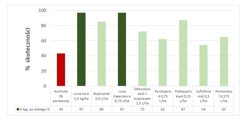 Wykres 1 – Doświadczenie prowadzona w Stacji Badawczej w Kozietułach Nowych. Oceny były prowadzone 3 tygodnie po ostatnim zabiegu. Skuteczność preparatów Luna Care oraz Luna Experience na najwyższym poziomie (97%) w porównaniu do innych standardów rynkowych.