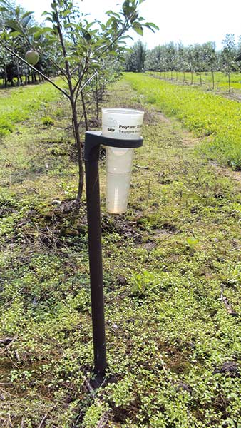 Fot. 8. Deszczomierz pomaga ocenić wielkość opadu deszczu