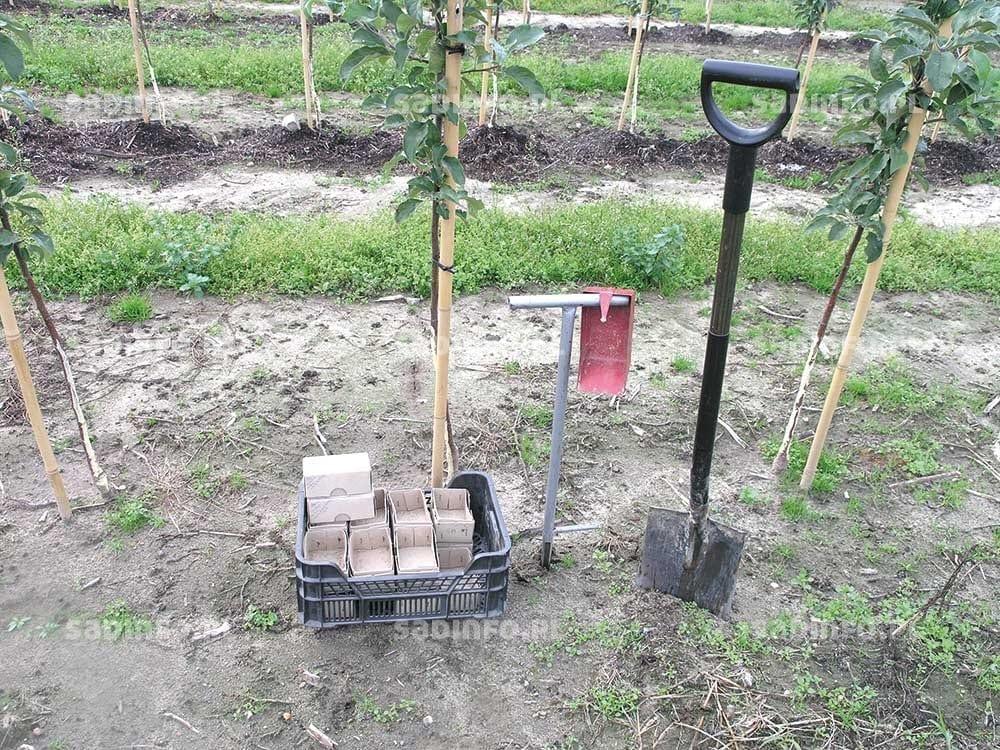 FOT. 1. Zestaw akcesoriów do pobierania prób glebowych