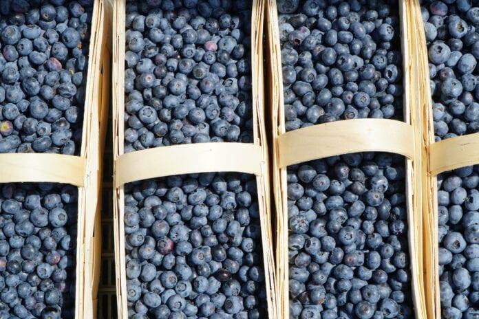 ceny owoców miękkich u pośredników