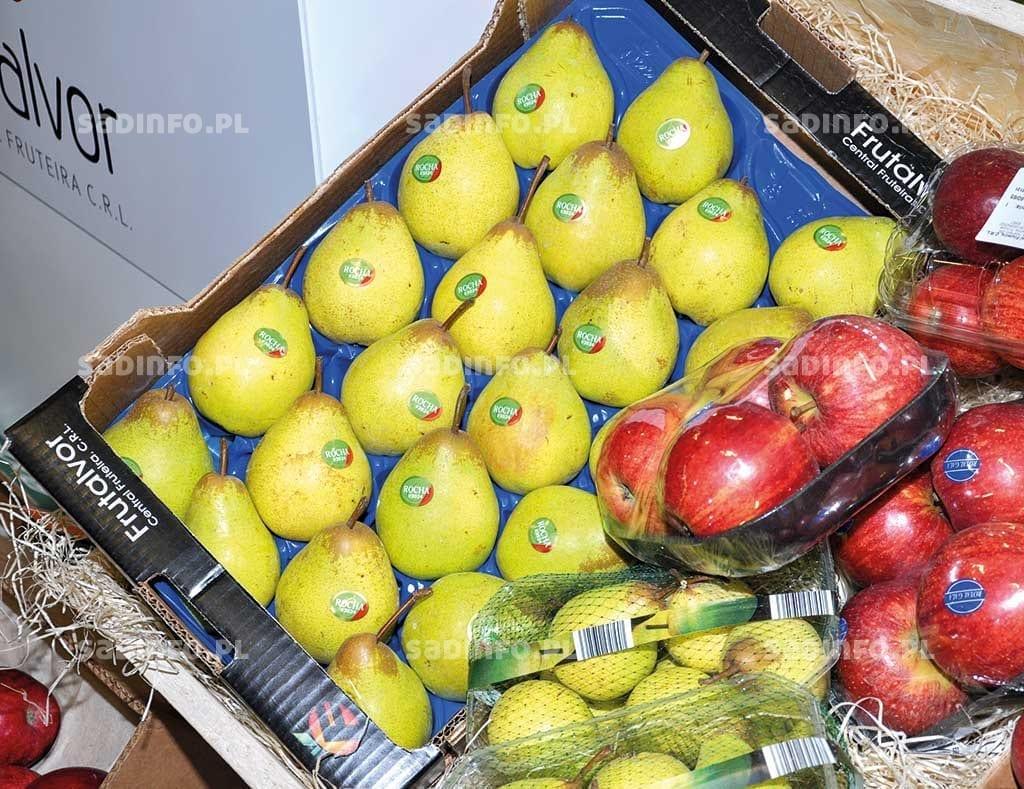 Fot. 7. Coraz częściej goszczące także na naszym rynku owoce odmiany 'Rocha'