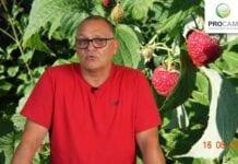 Krzysztof Gasparki Procam