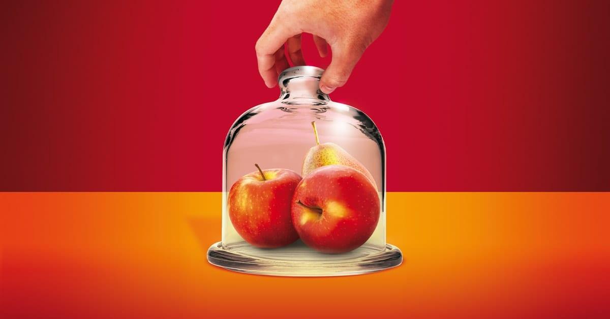 Ochrona przedzbiorcza jabłek 2020 - baner