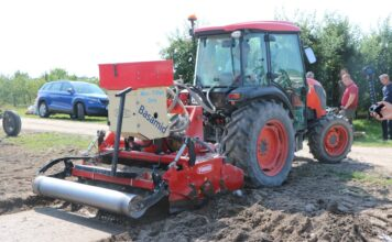 odkażanie gleby pod plantację truskawek