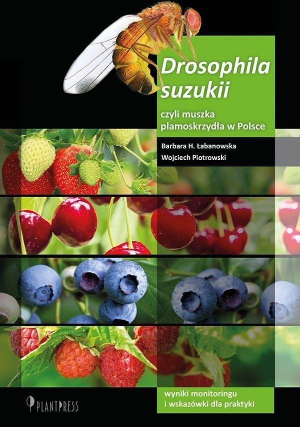 Drosophila suzukii, czyli muszka plamoskrzydła w Polsce. Wyniki monitoringu i wskazówki dla praktyki