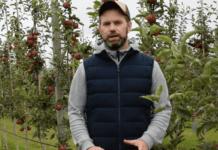 Komunikat sadowniczy Bayer – jabłonie, 02.09.2020