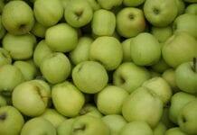 Dobry popyt na jabłka na niemieckich rynkach hurtowych
