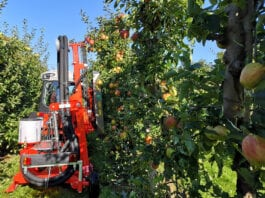 maszyna do usuwania liści z drzew w sadzie