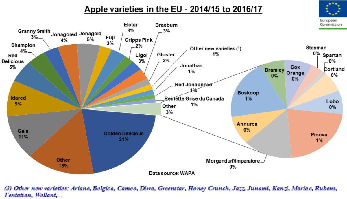 odmiany jabłoni w UE