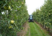 ciągnik sadowniczy