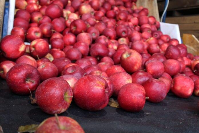 jabłka Red Jonaprince