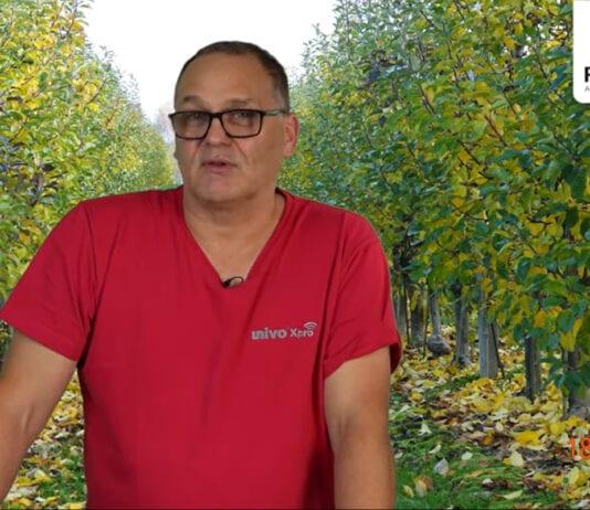 Komunikat sadowniczy PROCAM 21 z 18.11.2020