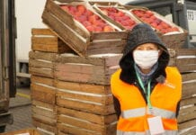 sadownicy przekazali jabłka potrzebującym