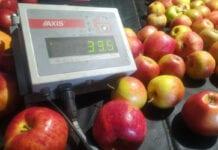 waga dla sadownika