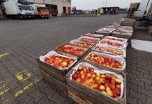 Ceny jabłek na Broniszach – relacja z rynku, 21.12.2020 [VIDEO]