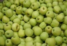 Włochy: Wyższa sprzedaż o 35% i mniej jabłek w chłodniach