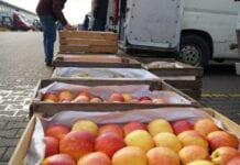 Bronisze 07.12.2020 – stała podaż jabłek, więcej gruszek