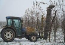 Cięcie mechaniczne sadu piłami tarczowymi – opinia sadownika po 4 latach, 11.12.2020