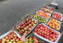 Rynek w Broniszach – mały ruch w święto Trzech Króli, 6.01.2021 [Video]