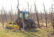 używany ciągnik sadowniczy