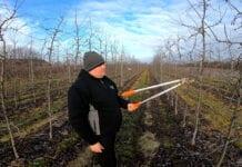 Rozmowy przy cięciu jabłoni: Szymon Czuj, 09.01.2020 [Video]