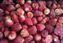mrożone truskawki