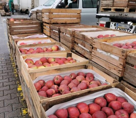 Grupa czy rynek hurtowy? Gdzie obecnie lepiej sprzedać jabłka?