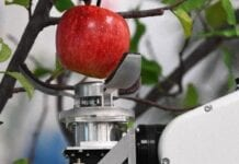 Japoński robot do zbioru jabłek w sprzedaży za 5 lat