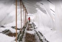 zawalony tunel
