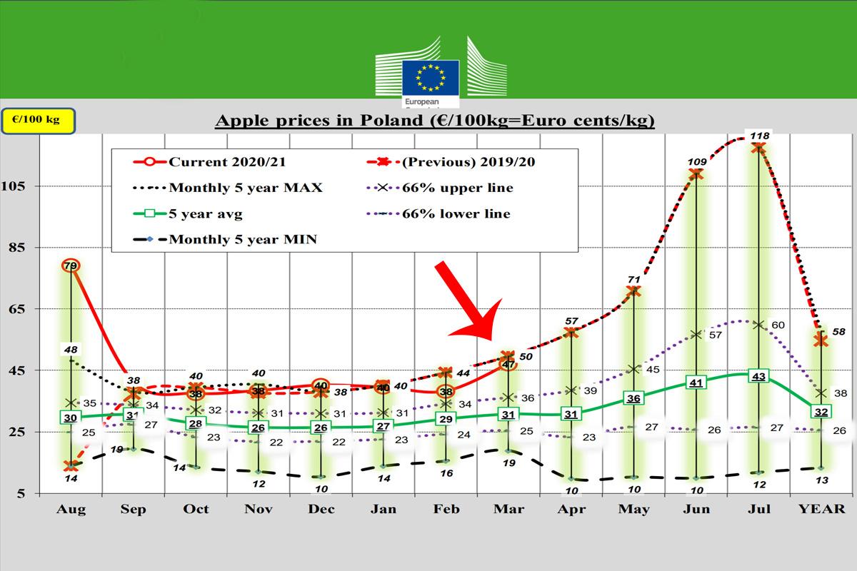 wykres ceny jabłek
