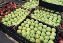 jablka polskie