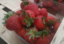 Hiszpanie niezadowoleni z cen truskawek ustalanych przez supermarkety