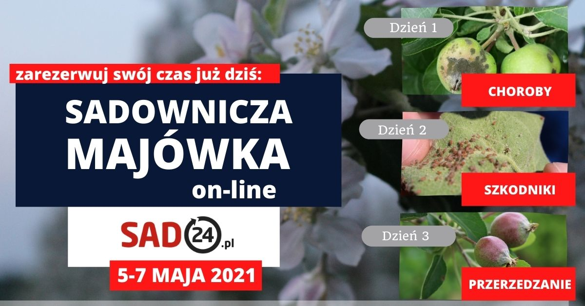 sadownicza majówka on-line