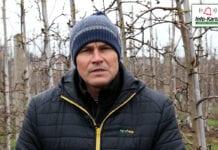Komunikat sadowniczy – Robert Binkiewicz, Agrosimex, 17.04.2021