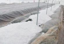 śnieg w tunelach