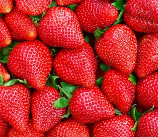Smak, aromat, jakość – po prostu truskawka!