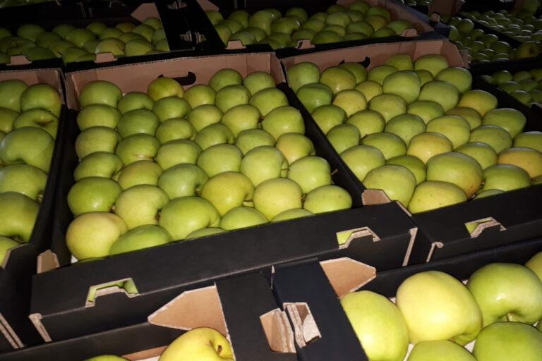 Cennik jabłek na sortowanie – 10 maja 2021