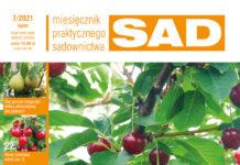MPS Sad 7/2021 - okładka