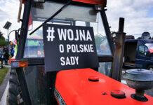 Mirosław Maliszewski: Sytuacja na rynku jabłek i protesty dotyczą wszystkich