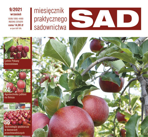 MPS Sad - nr 9/2021 - okładka