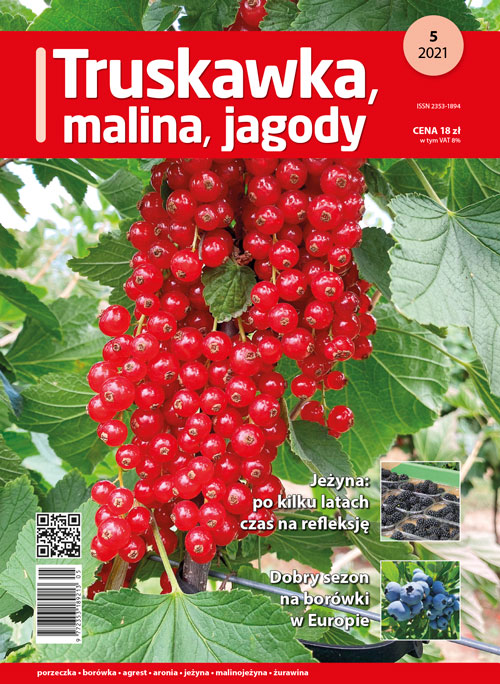 Truskawka malina jagody - nr 5/2021 - okładka