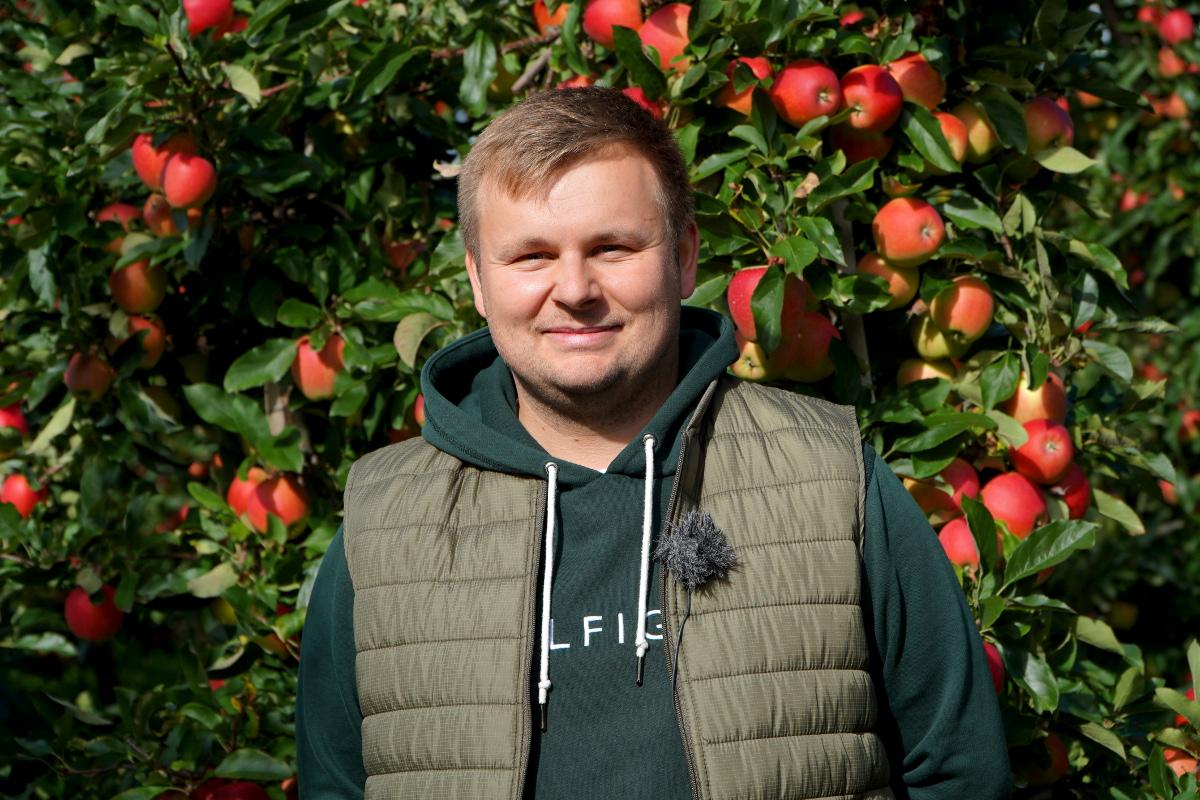 Zbiory jabłek 2021 w sadzie Kuby Wasiaka w Jajkowicach